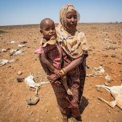 Millioner på randen av sult: Du kan hjelpe!