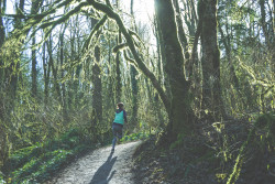 ECOTRAIL - Jeg løper for orangutangen!