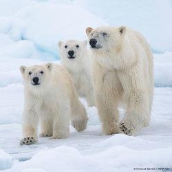 Tillsammans för klimatet!