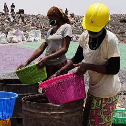 Grønne jobber i Mali