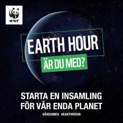 Earth Hour – 27 mars, kl. 20:30