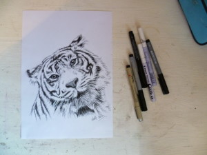 Art for Wildlife Project