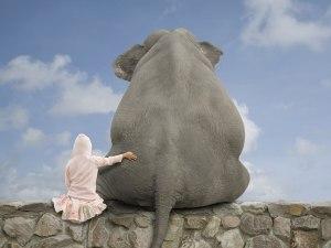 Cecilie ønsker seg elefant til jul!