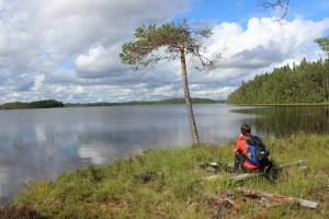 Nina's Finland Fund