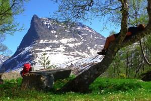 Går 700 km i norske fjell for kreftsaken