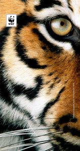 Hurra for tigerene!