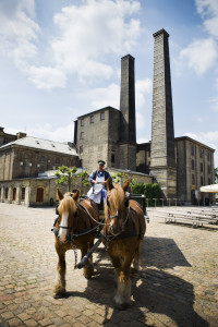The employees of Carlsberg have joined forces