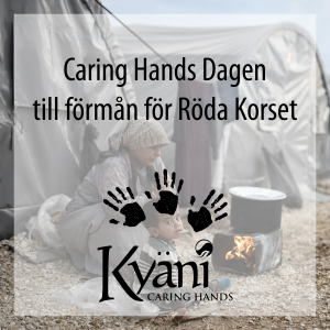 Caring Hands 2017