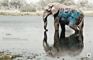 Hjelp WWF å hjelpe
