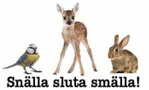 Förlåt för nyår alla älskade djur