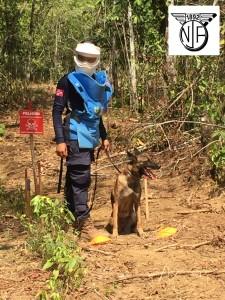 NJFs innsamling til minerydding og utvikling i Colombia