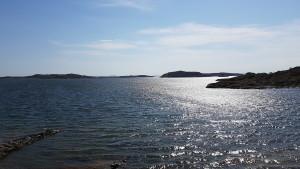Plastfria hav för nästa generation