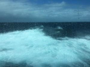 Älska havet