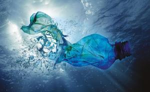 Är du medveten om hur plast påverkar haven, djuren & dig själv som människa?