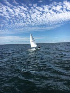 Östersjön behöver oss