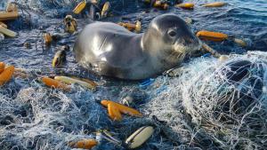 La oss redde havet!