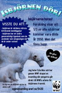 Isbjörnspatrullen