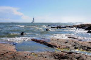 Sekaisin merestä! Save our sea, säilytä Itämeri!