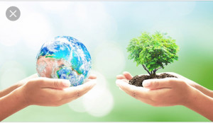 Stoppa massutrotningen av biologisk mångfald