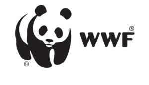 Fryshuset kamp mot utrotning