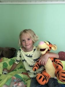 Hjälp Maja att rädda tigrarna