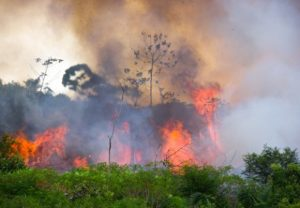 Hjälp Amazonas