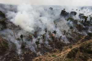 Rädda Amazonas