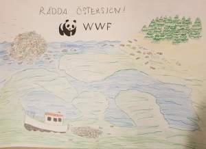 Himmel & Pannkaka hjälper till att Rädda Östersjön
