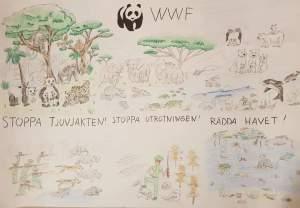 Himmel &Pannkaka hjälper till att Stoppa Utrotning