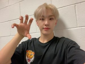 CARATS FOR TIGERS