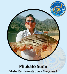 Phukato sumi   nagaland