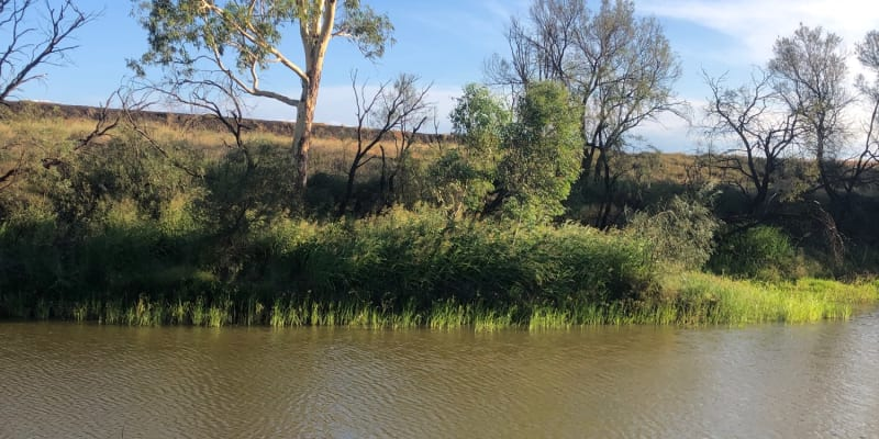 Top 10 campsites for fishing near Toowoomba, QLD