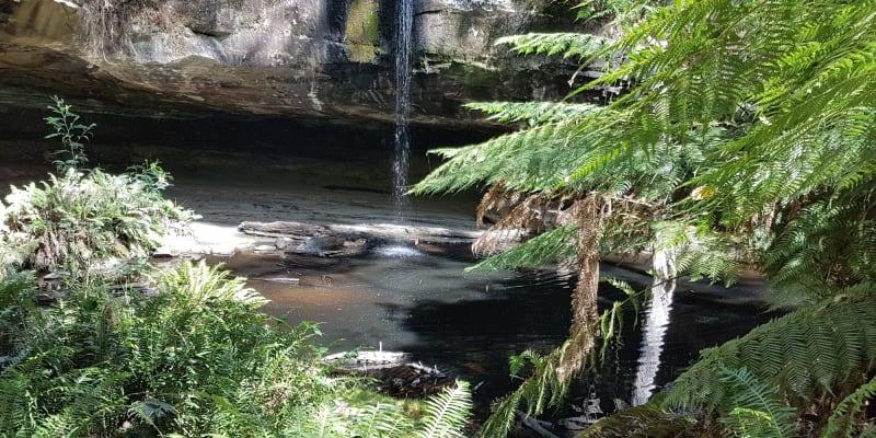 Top 10 free campsites near Torquay, VIC
