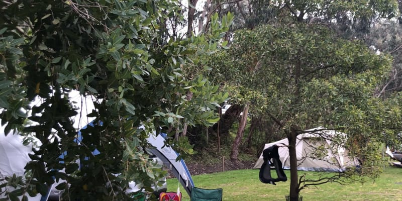 Top 10 campsites that allow fires near Jan Juc, VIC