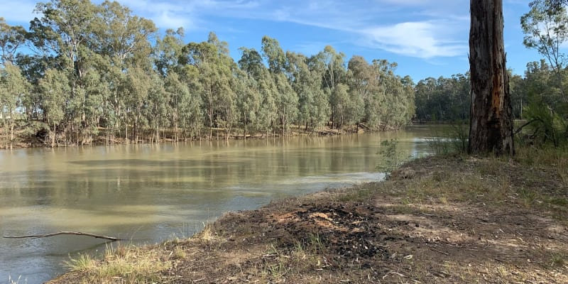 Top 10 campsites that allow fires near Echuca, VIC