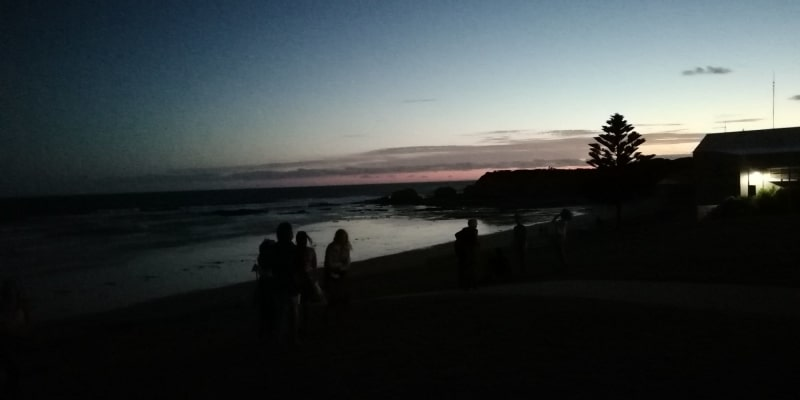 7 best places to camp near Bells Beach VIC
