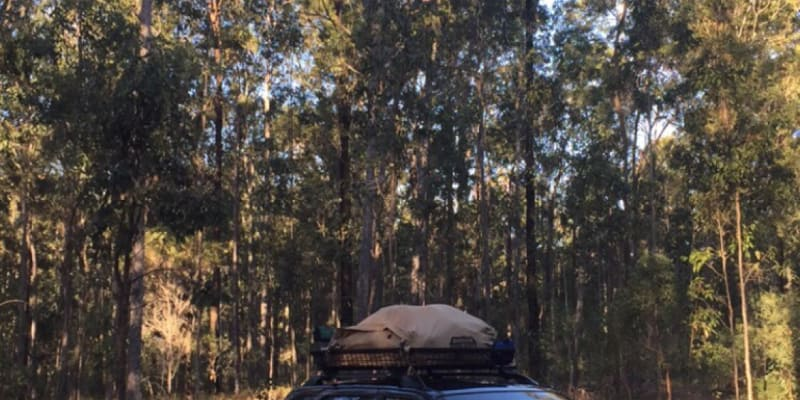 Top 10 free campsites near Coffs Harbour, NSW