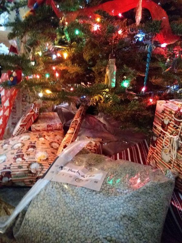 Happy Oaxacan Coffee Christmas