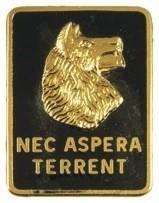 "27th Infantry Regiment ""Wolfhounds"" Cap Crest"