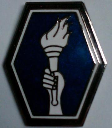 442 RCT Large Hat Pin