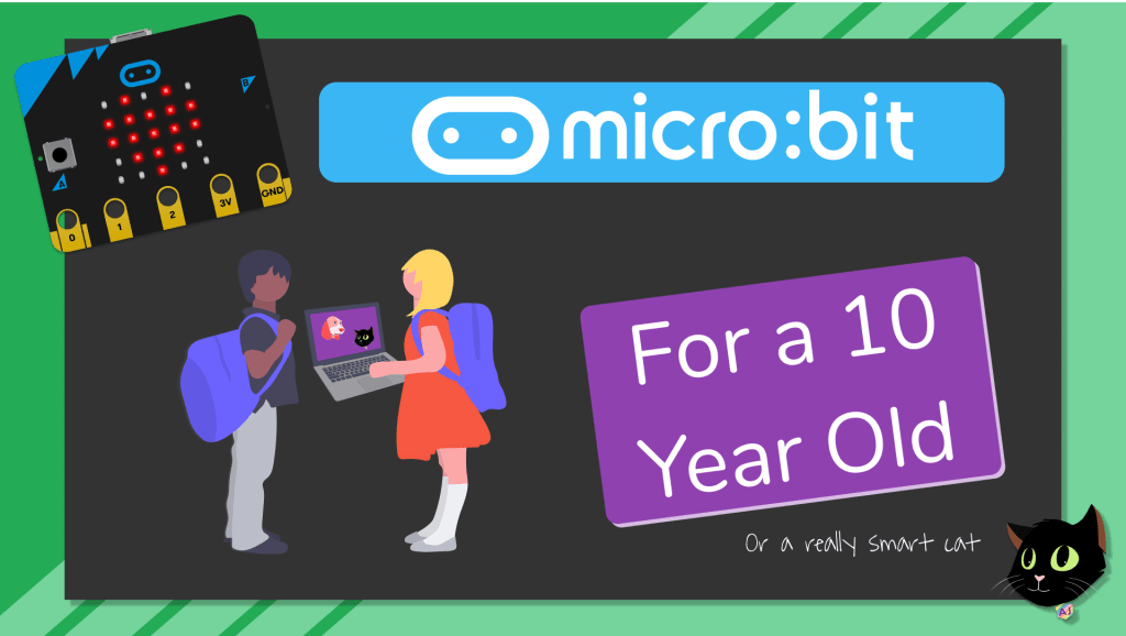 ForA10YearOldMicroBit