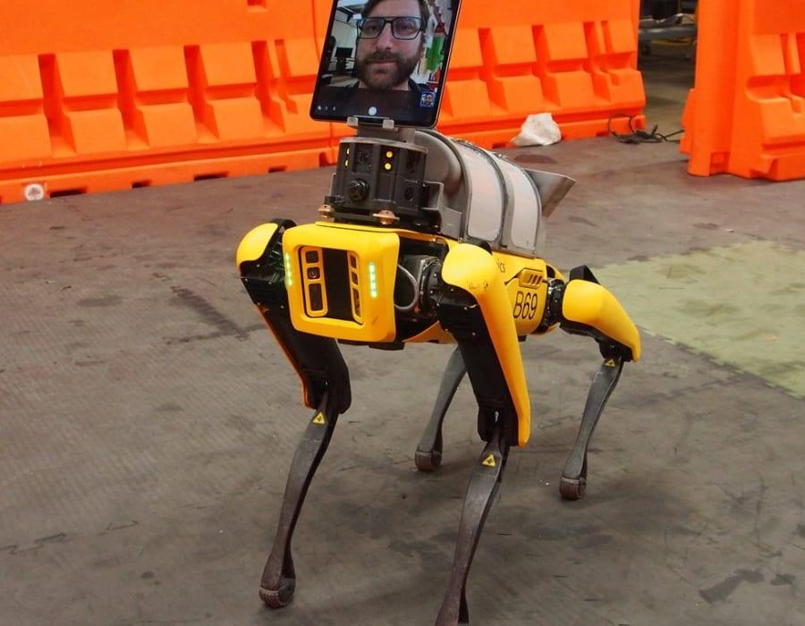 Boston Dynamicsin Robot Köpekleri Hastanelerde