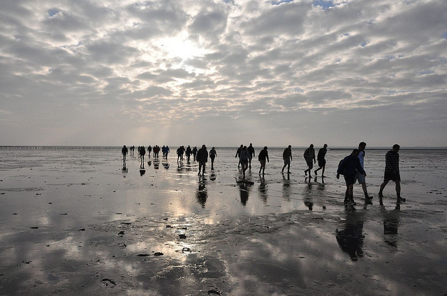 Mudflat hiking between the Dutch Wadden Islands