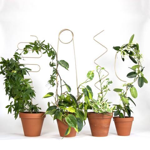 Botanopia Plant Stakes
