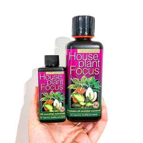Houseplant Focus Liquid Fertiliser