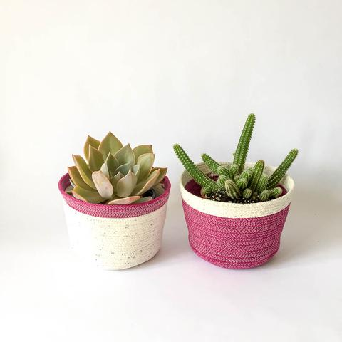 Twig Plants and Pots - Plum concrete indoor plant pot