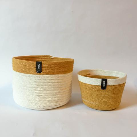 Twig Plants and Pots - Amber concrete indoor plant pot