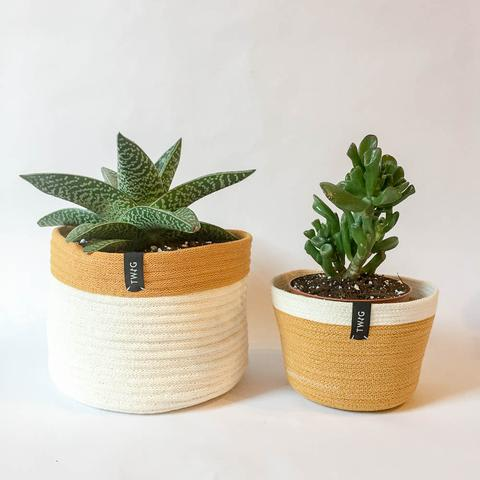 Cotton Pot - Amber
