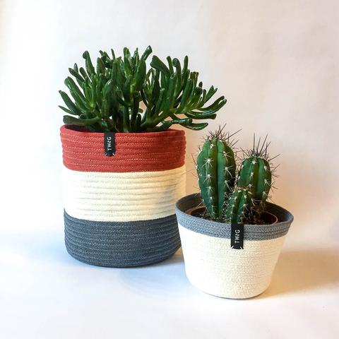 Twig Plants and Pots - Ember - limited edition concrete indoor plant pot
