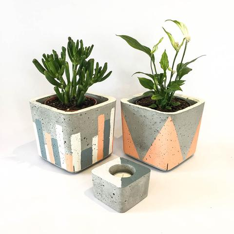 Twig Plants and Pots - Jester concrete indoor plant pot